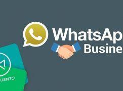 Descargar Whatsapp Business Android GRATIS – Whatsapp para Empresas 2018